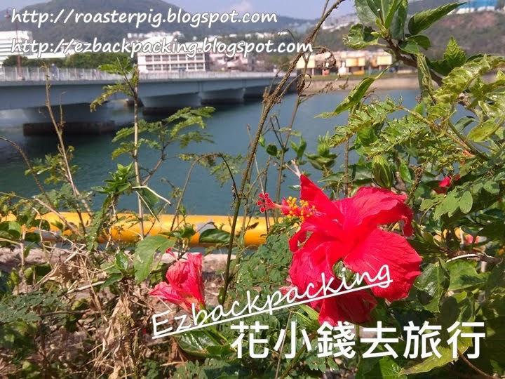 大紅花與雙子橋
