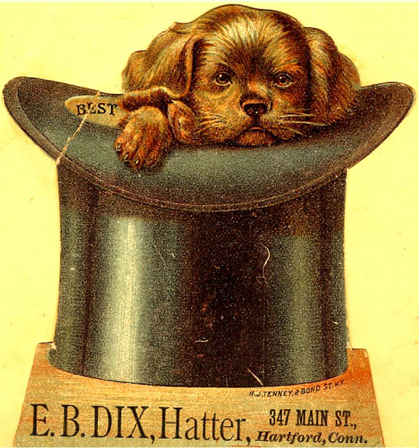 black top hat houses brown puppy