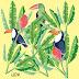 Ilustrações tucanos e folhagem