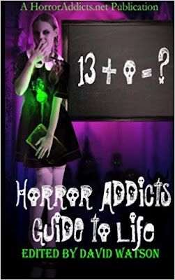 Horror Addicts Guide To Life book cover depicting a gothic-dressed teenage girl standing next to a blackboard.