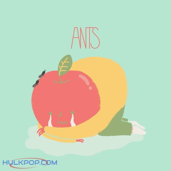 ANTS – Sorry – Single