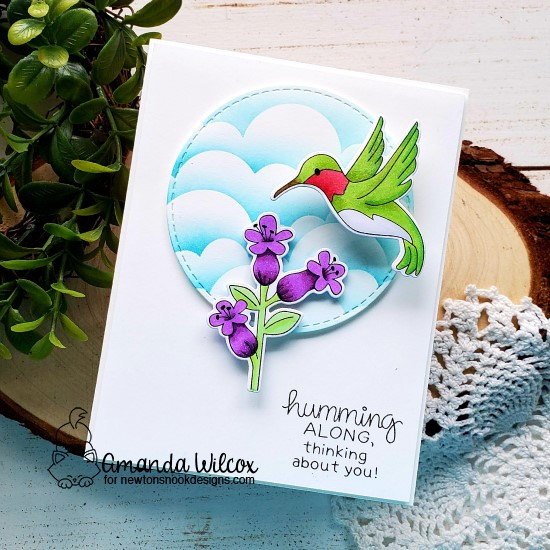 Hummingbird Card by Amanda Wilcox   Hummingbird Stamp Set, Circle Frames Die Set and Clouds Stencil by Newton's Nook Designs #newtonsnook #handmade
