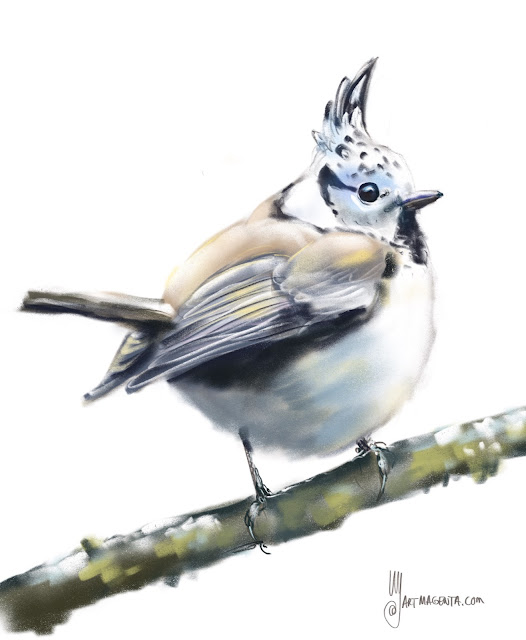 Crested tit bird painting by Artmagenta