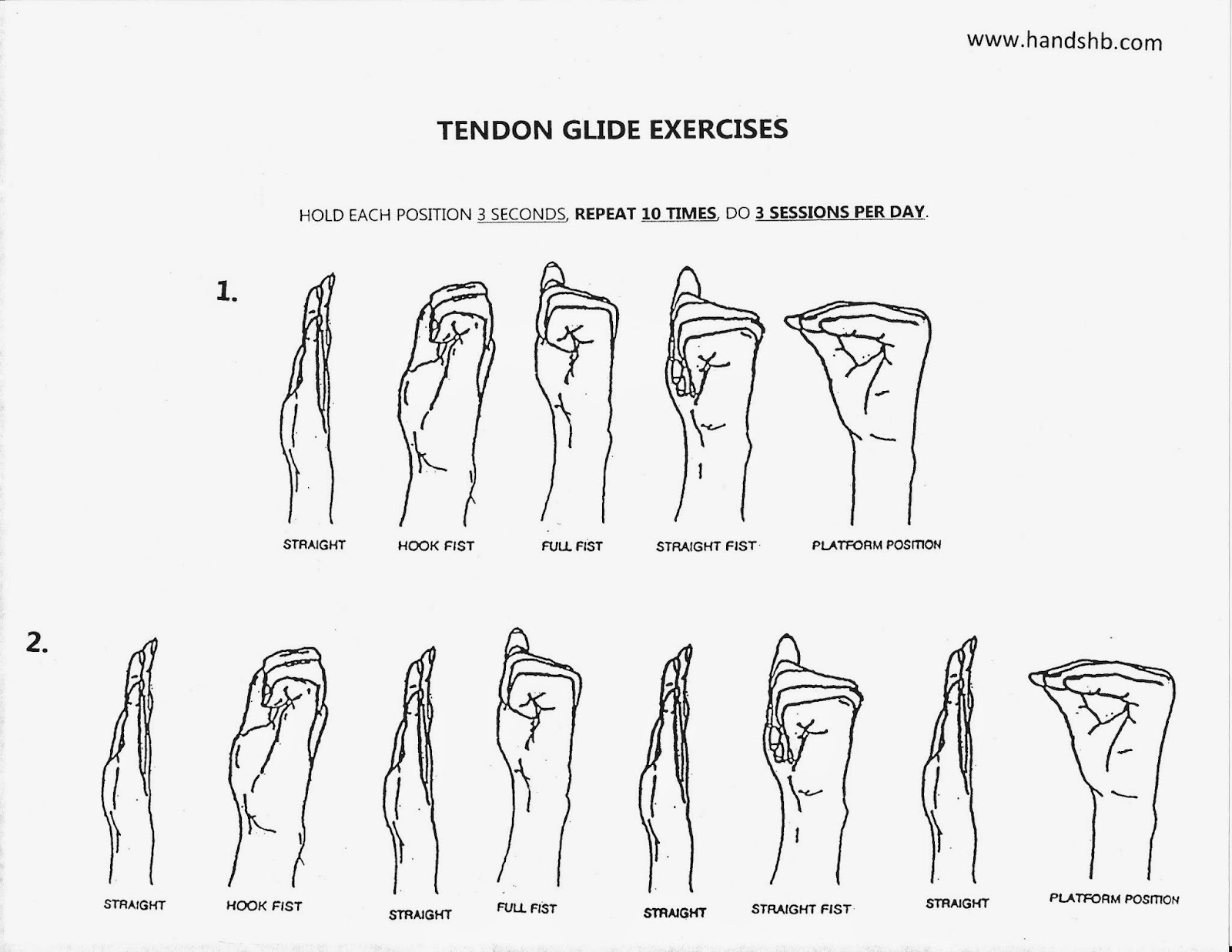 Active Range Motion Exercises Hand Out