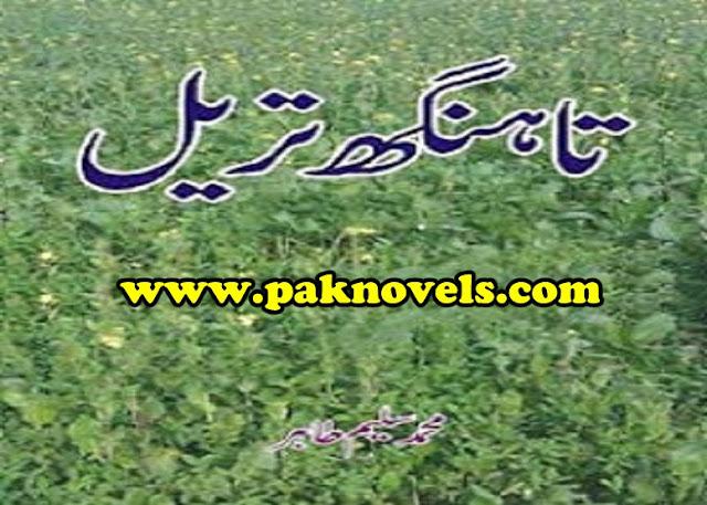 Muhammad Saleem Tahir