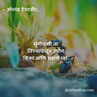 good thoughts in Marathi, marathi thoughts on success