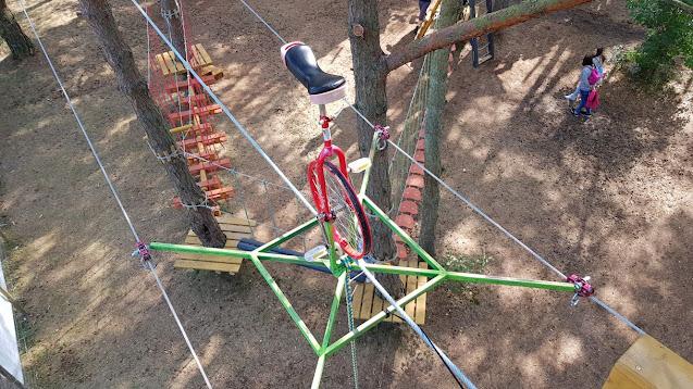 rower na drzewach atrakcja turystyczna