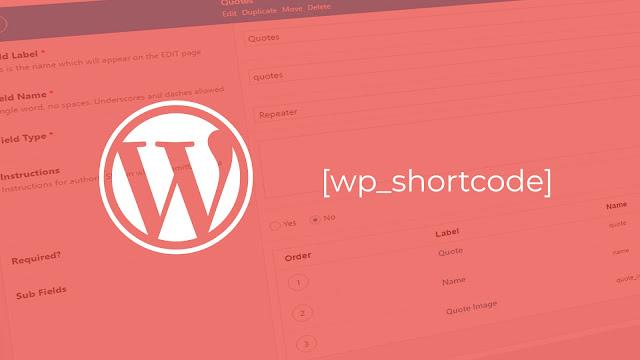 Menambahkan script costum field di wordpress