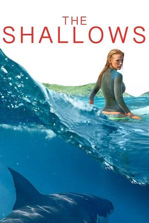 The Shallows (2016) 950MB Full Hindi Dual Audio Movie Download 720p BluRay thumbnail