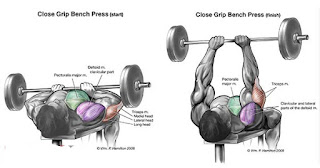 Top 5 Exercises To Build Triceps, Close Grip Bench Press