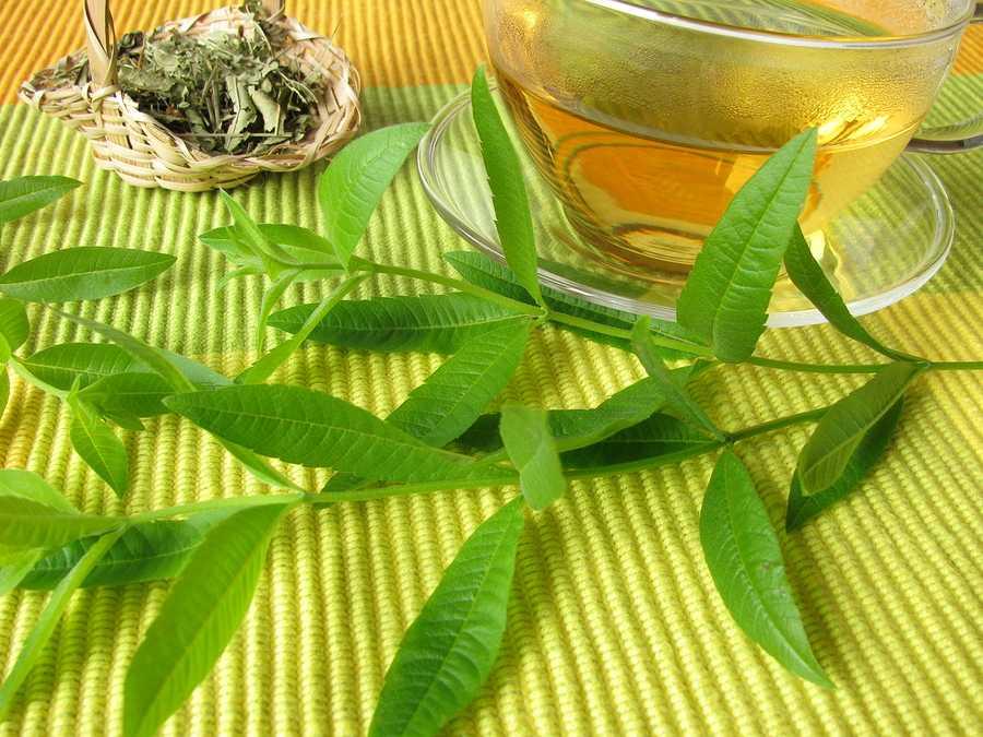 11 Benefícios da Lúcia-lima à Saúde