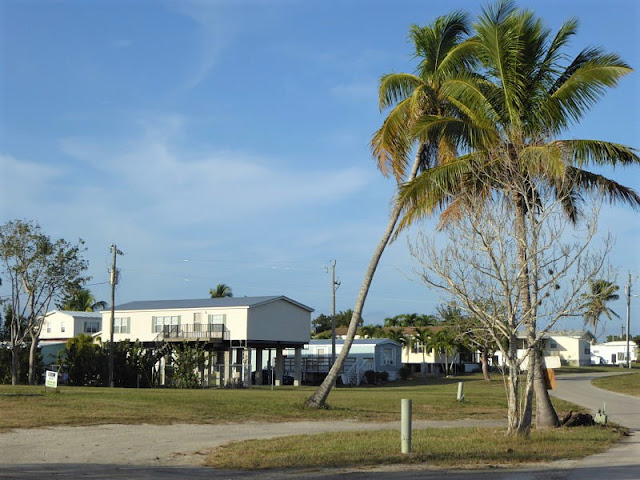 everglades city in florida
