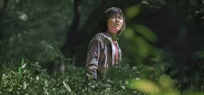 Sinopsis Film Okja (2017)