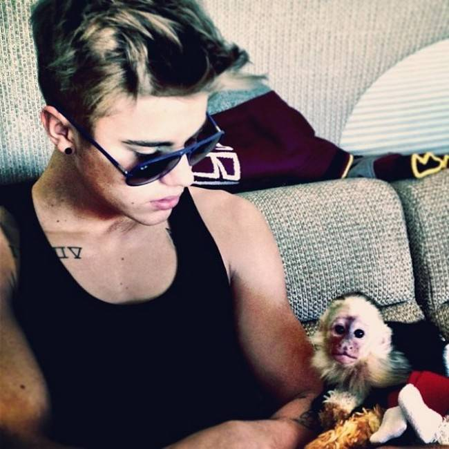 Justin Bieber and his capuchin monkey