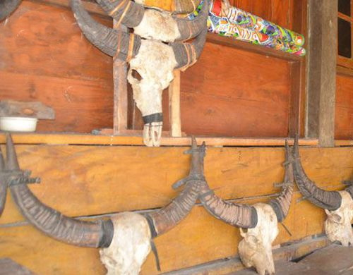 Tinuku.com Travel Prai Ijing village, the majesty indigenous peoples in Waikabubak and 48 traditional houses glorify Marapu land