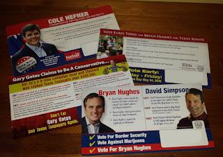 Texas candidate brochures