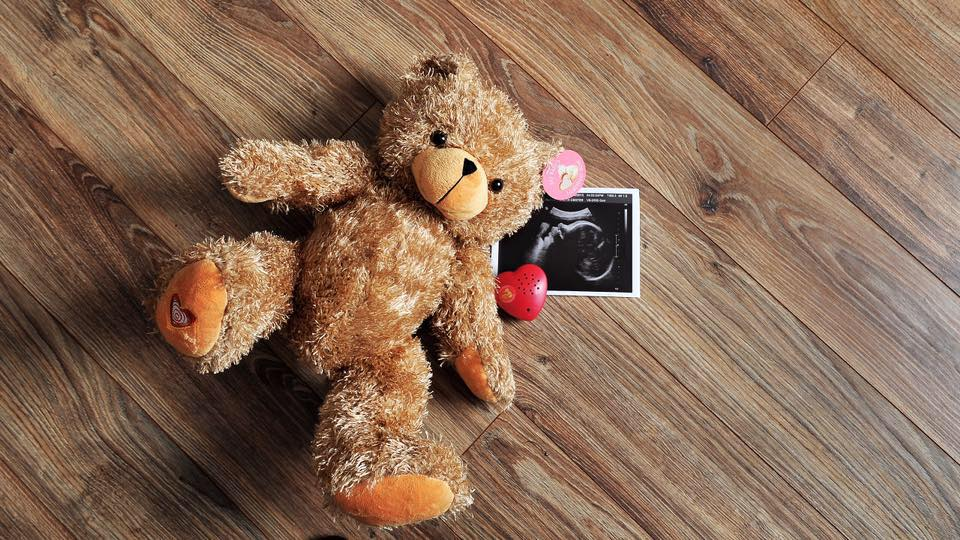 Susan S Disney Family My Baby S Heartbeat Bear A Great Gift For