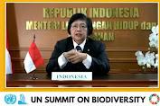 Pemerintah Indonesia Mengajak Dunia Internasional Jadikan Bumi Sebagai Sumber Kehidupan Layak Dan Harmonis