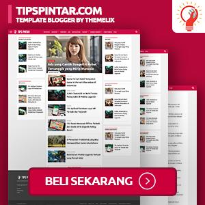 TipsPintar.com