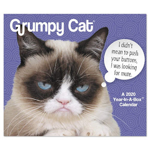 Grumpy Cat 2020 Day-to-Day Calendar