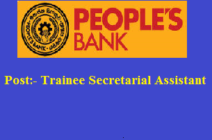 Trainee Secretarial Assistant