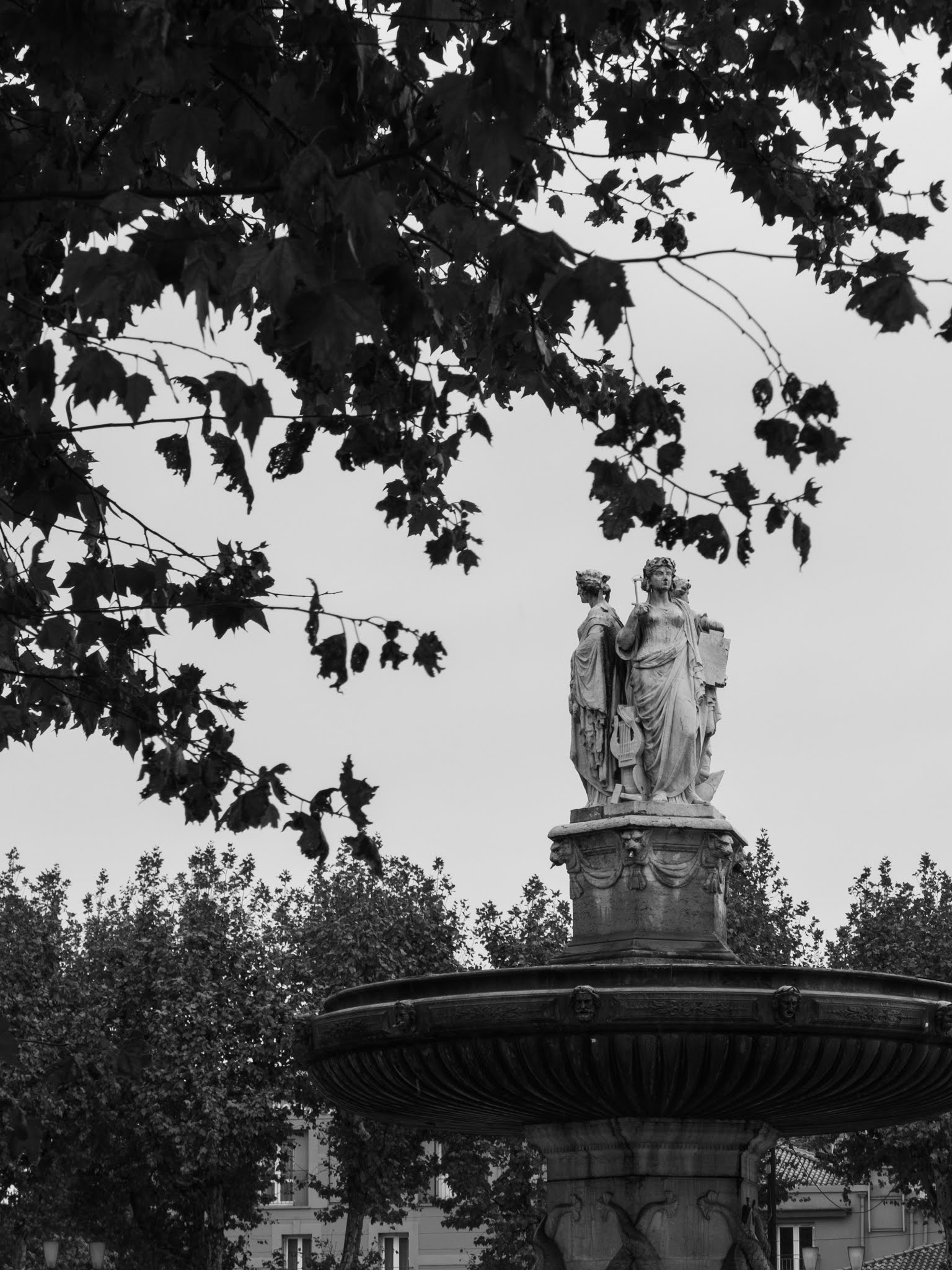 Fontaine de la Rotonde in black and white with sycamore tree branches hanging in front.