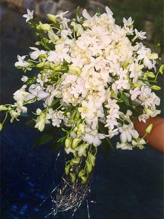 Bouquet Sposa Non Ti Scordar Di Me.Mille Cose Da Ricamare Mille Res Adnectunt Il Bouquet Della Sposa