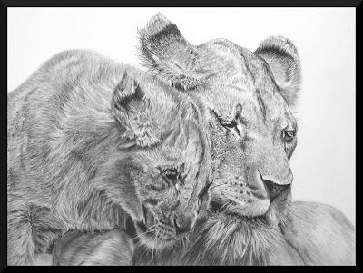 pastel animalier, faune sauvage, lion, lionceau, dessin