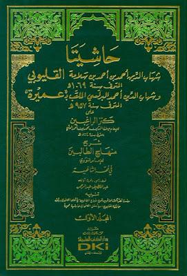 Hasyiah Qalyubi wa Umairah