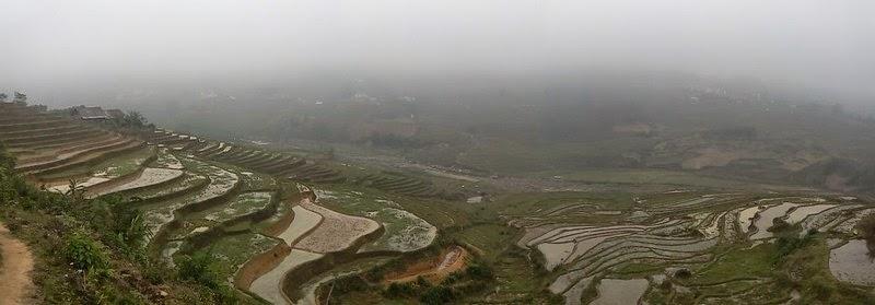 Vallée de Sapa, Vietnam, rizière