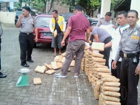 Polisi Dihadiahi 329 Kg Ganja