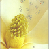 Química Orgânica - Vol. 1 - 10ª Ed. 2012 Solomons,T.w. Graham