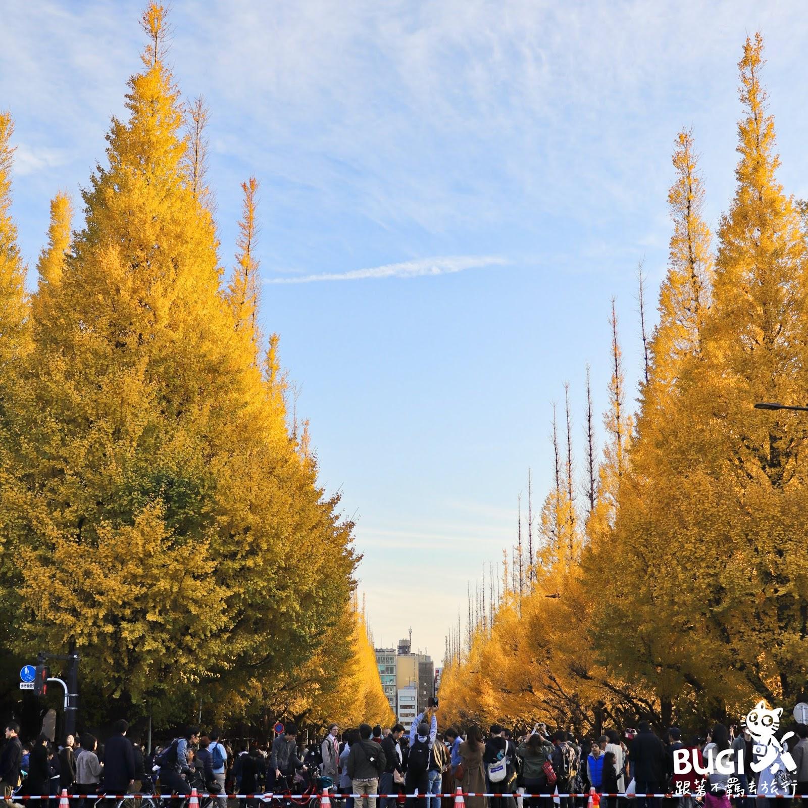 東京銀杏景點|神宮外苑銀杏祭,陽光下的一片金黃。 (含祭典&見頃時間,交通,美食,其他黃葉景點 ...