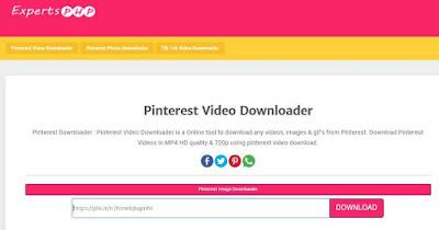 download video pinterest expertsphp