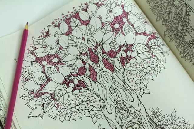 Livro De Colorir Antiestresse Floresta Encantada Questoes De