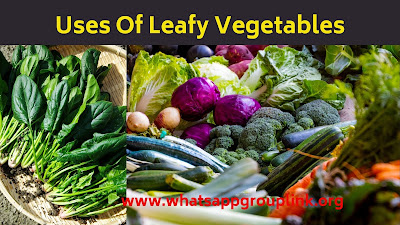 uses of leafy vegetables