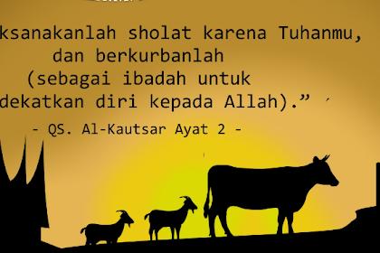 hukum keutamaan dan ketentuan qurban menurut islam