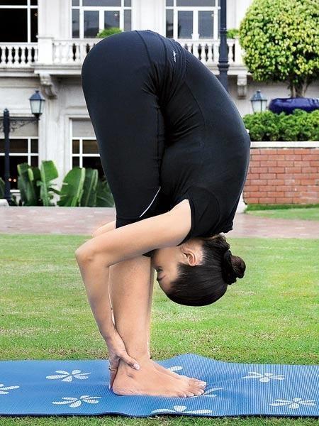 पादहस्तासन (Padahastasana - Hand Under Foot Pose) Surya Namaskar (Yoga)