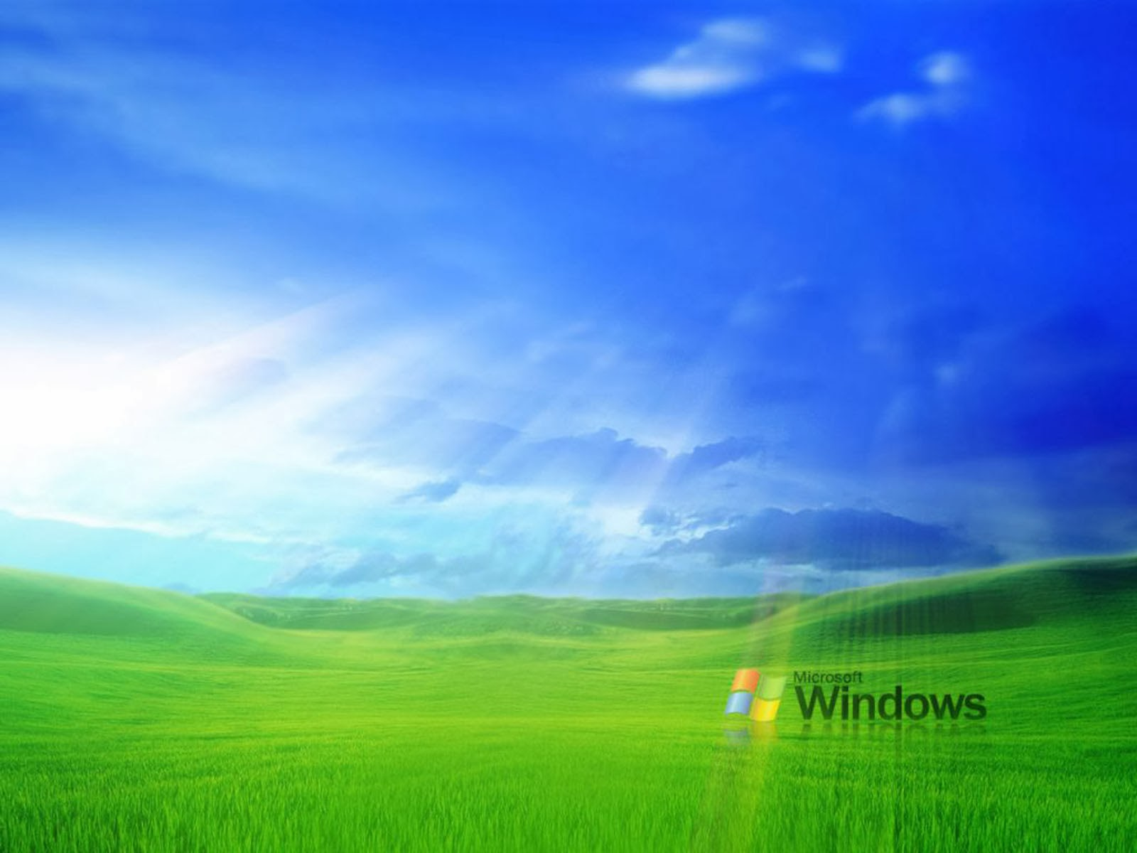Wallpapers grass windows xp wallpapers for Tapiz escritorio