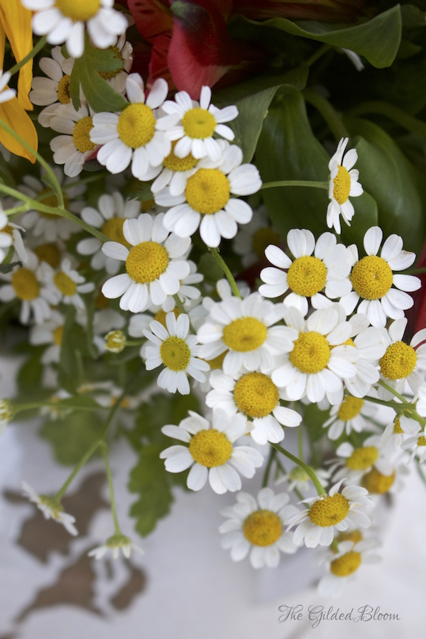 Chamomile- Farmhouse Floral with Sunflowers - www.gildedbloom.com
