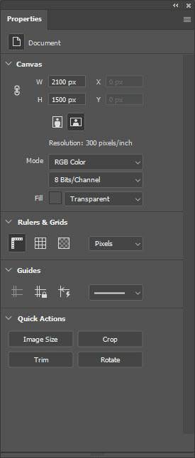 Properties panel when none of the layers is selected