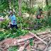 Anggota Satgas TMMD Membantu Warga Mencari Kayu Bakar