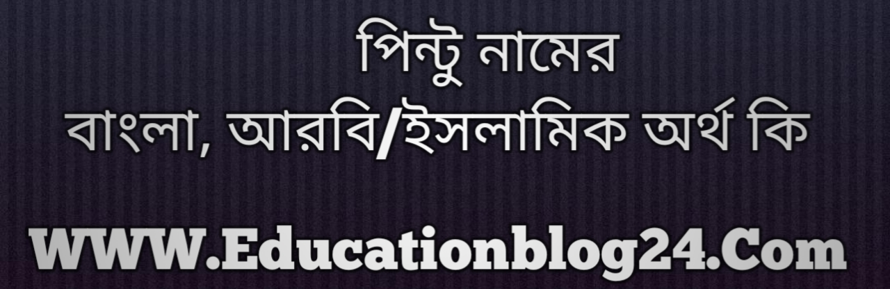 Pintu name meaning in Bengali, পিন্টু নামের অর্থ কি, পিন্টু নামের বাংলা অর্থ কি, পিন্টু নামের ইসলামিক অর্থ কি, পিন্টু কি ইসলামিক /আরবি নাম