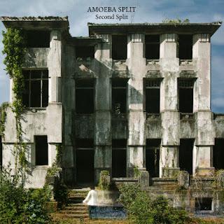 Amoeba Split - 2016 - Second Split