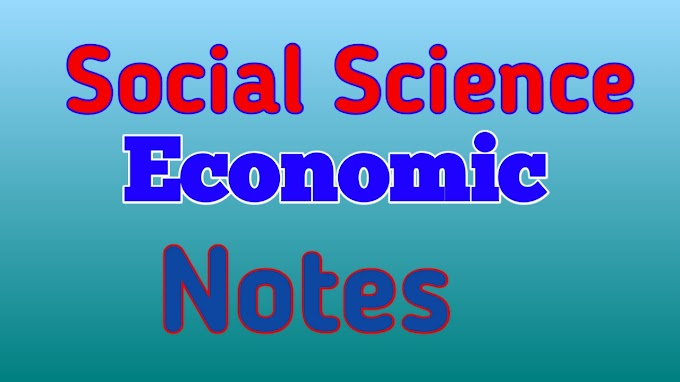 Social Science Economics Notes