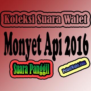 Suara Walet Monyet Api 2016 (SP)