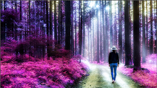 membuat warna gambar terbalik di photoshop