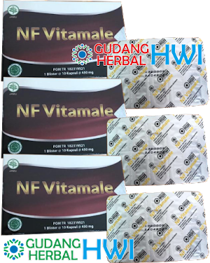 NF Vitamale (Paket Hemat Isi 3 Blister)