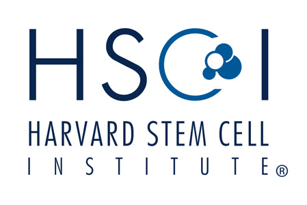 Harvard Study - Stem Cells Are Primary Source of Brain Tumor Growth