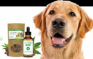 CBD FOR PETS - 250mg/Bacon-flavor